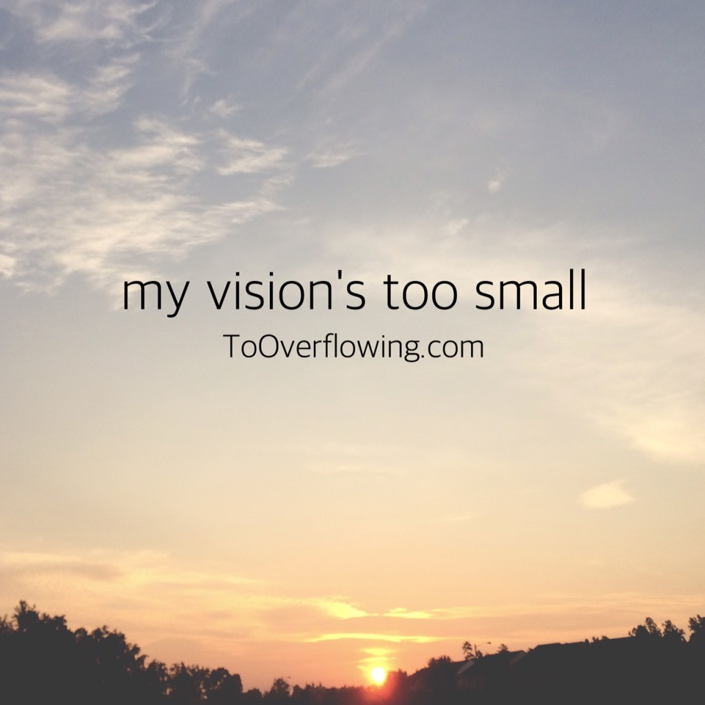 my vision's too small