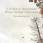 Truths to Remember when Facing Unknowns {Giveaway Winner}