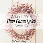 God graciously shepherds {Week 3, Advent 2015}